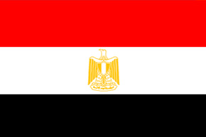 corporate investigator egypt