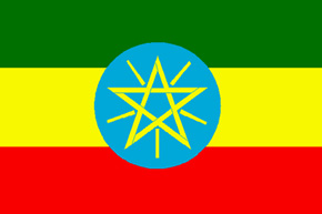 corporate investigator ethiopia