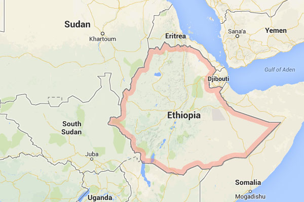 corporate investigation ethiopia