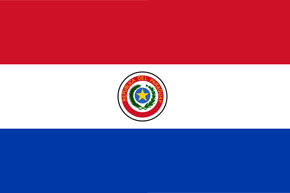 ip rights investigator Paraguay