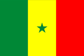 corporate investigator senegal